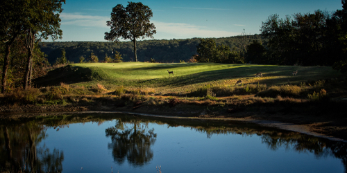 The Course at Sewanee